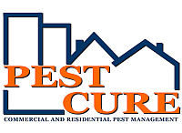 pest cure.png